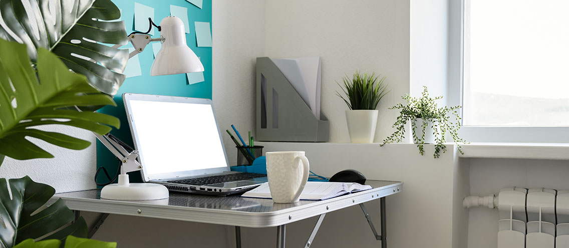 Clean workspace with plants for boosted creativity